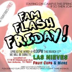Flash Friday - Snow Cones